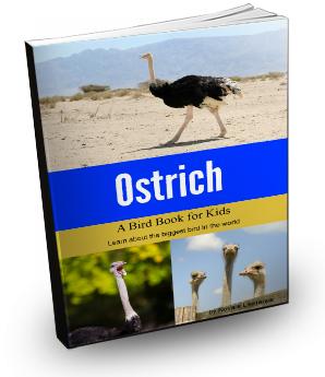 Ostrich Book